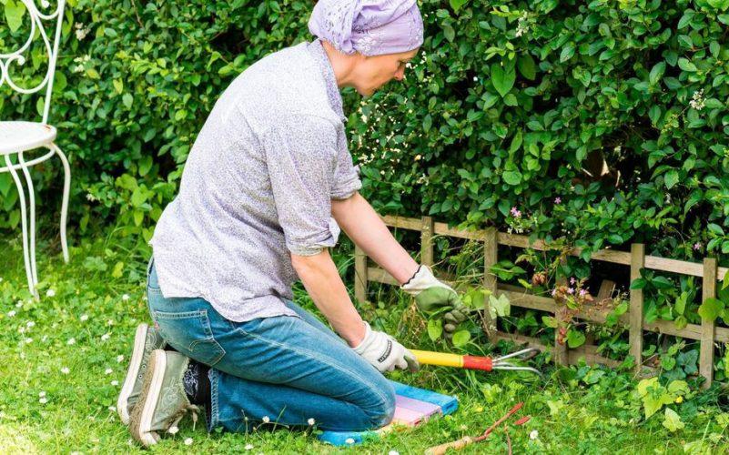 Désherber son jardin : nos astuces